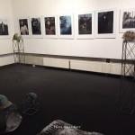 """Exposition de Youry Bilak """"Maïdan, histoire du future"""" à la maison de l'Ukraine à Kiev. 3"""